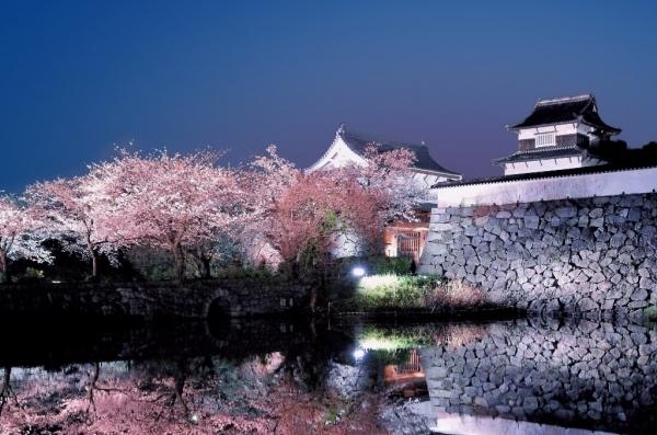 福岡城さくらまつり ライトアップ